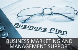 Business Marketing and Management support